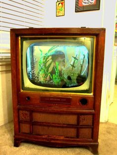 TV Aquarium- the TV parts were gutted and we just set the aquarium in it.