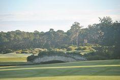 Grand Cypress Golf Course! Amazing! Love it!