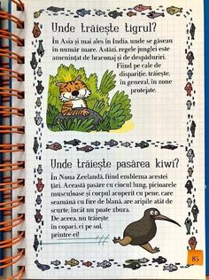 Romanian Language, Reading Comprehension Skills, Baby Education, Educational Activities, After School, Kids And Parenting, Animals And Pets, Learning, Children
