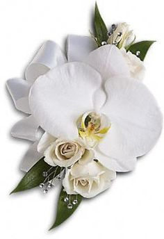 Stunning, snow-white blooms are both elegant and versatile. A lovely white phalaenopsis orchid with white spray roses and Italian ruscus. Approximately 5 1/2 W x 8 H.