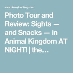 Photo Tour and Review: Sights — and Snacks — in Animal Kingdom AT NIGHT! | the…