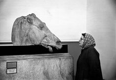 H Cartier-Bresson 1951 London. Head of one of 4 horses from Chariot of Selene, Goddess of the Moon, which was originally in the East pediment of the Parthenon in Athens