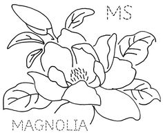 magnolia black and white drawing Floral Embroidery Patterns, Embroidery Stitches, Embroidery Designs, Flower Embroidery, Flor Magnolia, Magnolia Flower, Black And White Drawing, Flower Images, Square Quilt