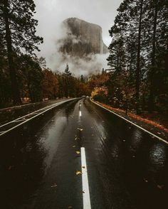 ✼✿✼ COULD THIS BE EL CAPITAN? IF SO, I HAVE BEEN ON THIS ROAD TRIP!..✼✿✼ 💛☬💛❧