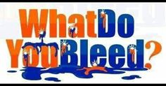 Orange, Broncos and Blue on Pinterest