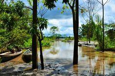 Dschungeltour in Iquitos, Peru