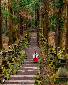 Kamishikimi-kumano-imasu Shrine/Mysterious World Like Ghiblis Movie Hakone, Naha, Places To Travel, Places To Go, Japanese Shrine, Japan Landscape, Beau Site, Kumamoto, Mysterious Places