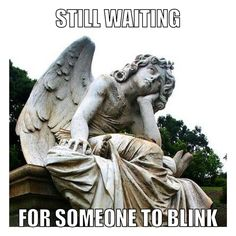 Doctor Who meme + weeping angel + blink.