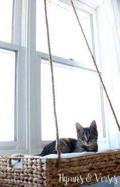 Panier suspendu face à la fenêtre pour chat curieux                                                                                                                                                                                 Plus