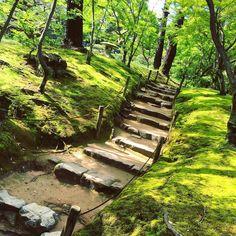 #hiroshima #shukkeien #shukkeiengarden #garden #japan #japangarden #asia #japanesegarden #ponds #rest #relax #piece #calm #zen #june #juneinjapan #sonikontheroad #asia #japantrip #aroundtheworld