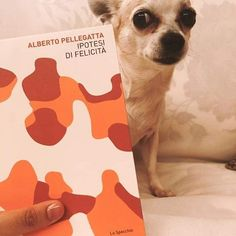 cane cani poesia, ipotesi di felicità, dog dogs poetry Doge
