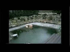 German Man Tries To Jump Into Frozen Pool - Ice pool fail