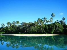 """""""THE ISLE OF PINES"""" *** We have chosen to tell about the """"Isle of Pines"""", as you might guess from its name, the characteristic vegetation makes it different from the other in archipelago of New Caledonia."""
