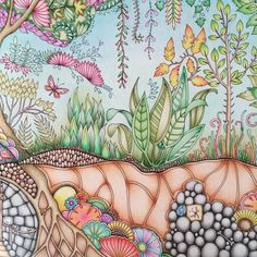 Enchanted Forest - Johanna Basford - Inspiration --> For the most popular adult coloring books and writing utensils including colored pencils, drawing markers, gel pens and watercolors, visit our website at http://ColoringToolkit.com. Color... Relax... Chill.