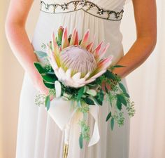 The King Protea makes such a bold statement.