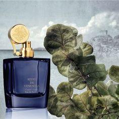 Aedes de Venustas Copal Azur : Perfume Review