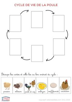 Cycle, Activities For Kids, Diagram, Albums, College, Book, Animales, Little Red Hen, University