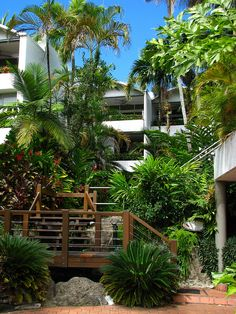Tropical resort landscaping, Port Douglas by tanetahi, via Flickr