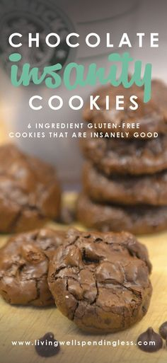 Gluten Free Chocolate Cookie Recipe | Easy Flourless Dessert Idea | Best Cookies via Living Well Spending Less