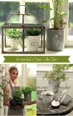 green gate collection