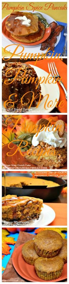 Pumpkin, Pumpkin and more Pumpkin!  Tons of Pumpkin Recipes in this Roundup. http://recipesforourdailybread.com/2014/09/14/pumpkin-pumpkin-more-pumpkin-recipes/