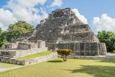 Costa Maya! History really comes alive here! #cruise #travel