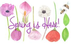 Spring Flowers Watercolor Clip Arts for by ColorYourDream on Etsy
