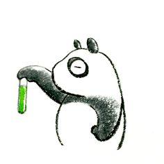 【一日一大熊猫】 2015.4.7 ミドリムシは栄養補給食品に使われているんだって。 知らなかった。 覚えておかなくちゃ。 #ミドリムシ