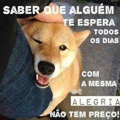 É PURO AMOR E ALEGRIA! ❤️❤️ #maedepet #petmeupet #maedecachorro #paidecachorro #cachorro #caopanhia #caopanheiro #cachorroétudodebom #cachorroterapia #bomdia