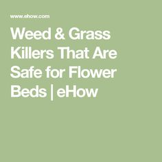 Weed & Grass Killers That Are Safe for Flower Beds | eHow