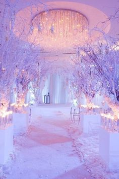 winter wedding lights with snowy branches