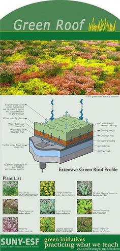 A green roof top is basically a rooftop that is actually covered in herbs, which often minimizes stormwater run-off and lessens chilling charges. Green Architecture, Sustainable Architecture, Sustainable Design, Landscape Architecture, Landscape Design, Residential Architecture, Contemporary Architecture, Pavilion Architecture, Natural Building