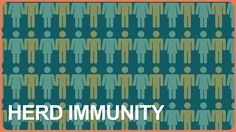 Healthcare Triage — Vaccines and Herd Immunity — In the last few years the rates of vaccine preventable illness have been on the rise. This isn't just something that's happening in the United States – it's happening throughout the world. Often, these outbreaks begin with unvaccinated people. They spread through them, too. Outbreaks occur because of a breakdown in herd immunity.