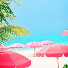 So beautiful, it looks fake. Photo courtesy of amycaicos on Instagram at Grace Bay Beach, Turks and Caicos.