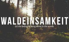28 Beautiful Words The English Language Should Steal -needs to be with a book on this particular word ;)