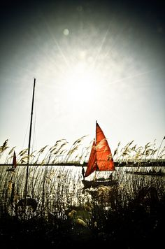 Boat at Neusiedler See Wooden Boats, Austria, Cool Pictures, Sailing, In This Moment, Explore, Boating, Sunlight, Bohemian