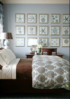 monochromatic nautical/natural history prints in identical frames      http://www.houzz.com/photos/192674/Mediterranean-mediterranean-bedroom-little-rock