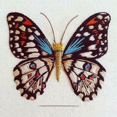 Мир насекомых полон вдохновения: разноцветные бабочки, прозрачные крылышки стрекоз, лаковые брюшки жуков — как оказалось, все это прекрасно переносится в мир искусства. В частности, доказательством могут послужить работы английской мастерицы Humayrah Poppins, где сочетание трунцала и канители, хлопковых и шелковых нитей, бисера и металлизированной кожи приобретают форму удивительных обитателей…