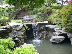 waterfall brooklyn botanic garden May 2007