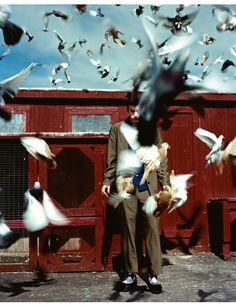 Arthur Elgort Pigeon coop, New York, 1997 Cinematic Photography, Candid Photography, Documentary Photography, Color Photography, Creative Photography, Street Photography, Portrait Photography, Movement Photography, Contemporary Photography