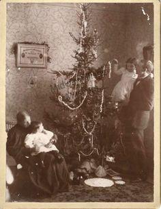1898 Christmas tree