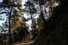 Lleida - Parque Natural Cadí-Moixeró 4, via Flickr.