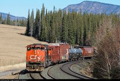 RailPictures.Net Photo: CN 5354 Canadian National Railway EMD SD40-2W at Brule, Alberta, Canada by Tim Stevens
