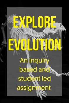 In this assignment, students examine horse fossils and draw their own conclusions about how the species has changed over time, diverged into separate species, and adapted to changing environments. Students are allowed to make inferences about the layers of sediment and where older and younger fossils may be found as well as extending their observations on horses to fossils of other mammals.