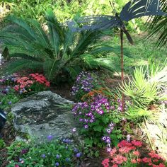 Gorgeous for a back or front yard! SO natural!