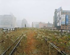 Looking Back at The History of The High Line in NYC, New Video ...