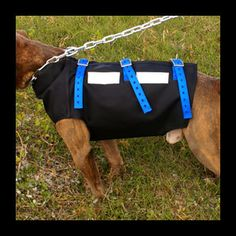 hog dog cut vest
