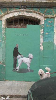 Poodle - Caniche (Valencia, Spain) by escif on Flickr