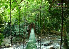 Go Wild !  #EllaJungleResort #tourism #srilanka #nature #eco #travel #spiritual #wild #river Like us: https://www.facebook.com/ellajungleresort