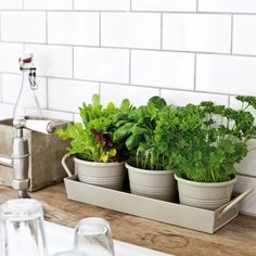 Con el buen tiempo apetece mucho tener plantas en casa. Dan alegría y muchas de ellas, como las plantas aromáticas son de gran utilidad en la cocina. Yo no tengo jardín, ni una terraza, por eso he …
